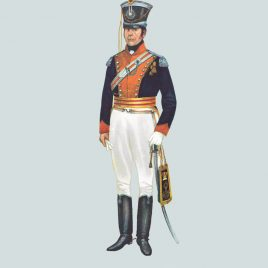 Field Officer, 14th Light Dragoons, 1815 (14th/20th King's Hussars)