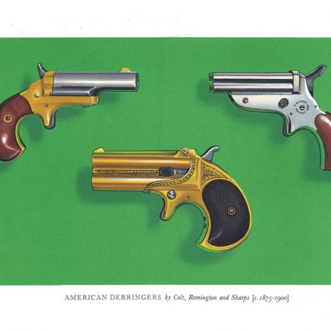 AO12 American Derringers