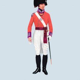 Officer, 56th Foot, 1801 (Essex Regiment)