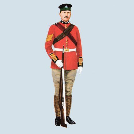 ATIII11 Sergeant, Irish Guards, 1901