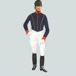 1806, Driver, Royal Artillery