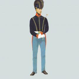 1815 Driver, Royal Artillery