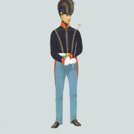 AW07 Driver, Royal Artillery, 1815