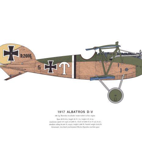 AD08 Albatros D-V