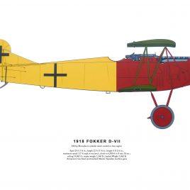 1918 Fokker D-VII