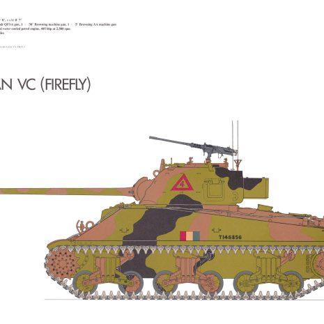 AY09 Sherman VC Firefly 1944