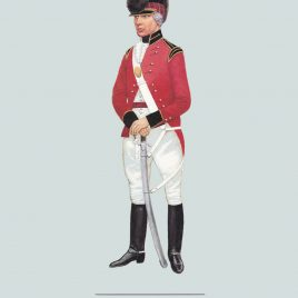 Officer, The Shropshire Yeomanry, 1795