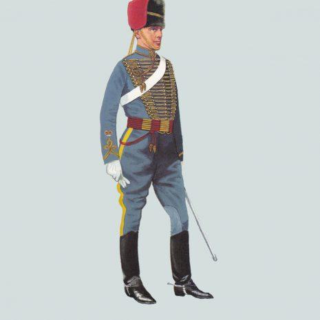 AZ12 Sergeant Major, Royal Gloucestershire Hussars, 1895