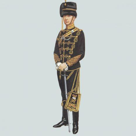 AZ14 Field Officer, Middlesex Yeomanry (Duke of Cambridge's Hussars) 1897