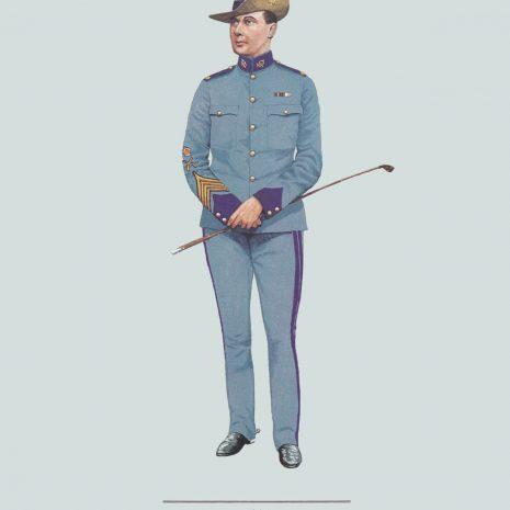 AZ17 Quartermaster Sergeant, City of London Yeomanry, The Rough Riders 1903