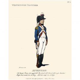 Royal Westminster Grenadiers