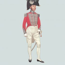 Officer, Officer, London and Westminster Light Horse, 1829