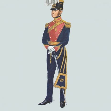 AZ07 1846 Officer, The West Somerset Yeomanry